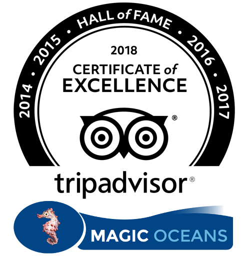 Magic Oceans - Tripadvisor Hall of Fame