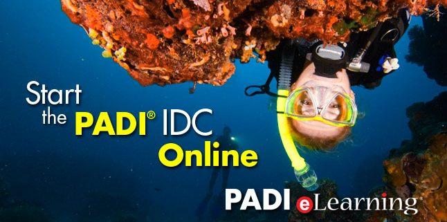 PADI Instructor Development Dive Resort