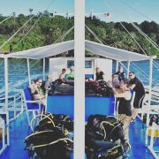 Dive Trip Camiguin Island Magic Oceans Anda Bohol