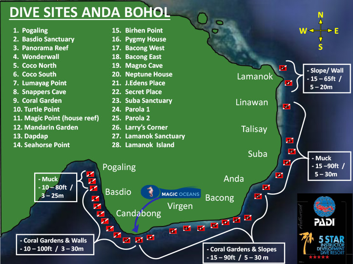 Diving Bohol Anda